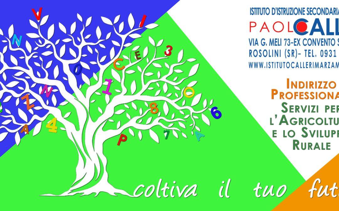 """Orientamento scolastico, visita all'Istituto Agrario di Rosolini: """"Coltiviamo la vostra cultura"""""""